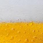 "<span class=""title"">ビール税額統一も発泡酒などは増税か</span>"